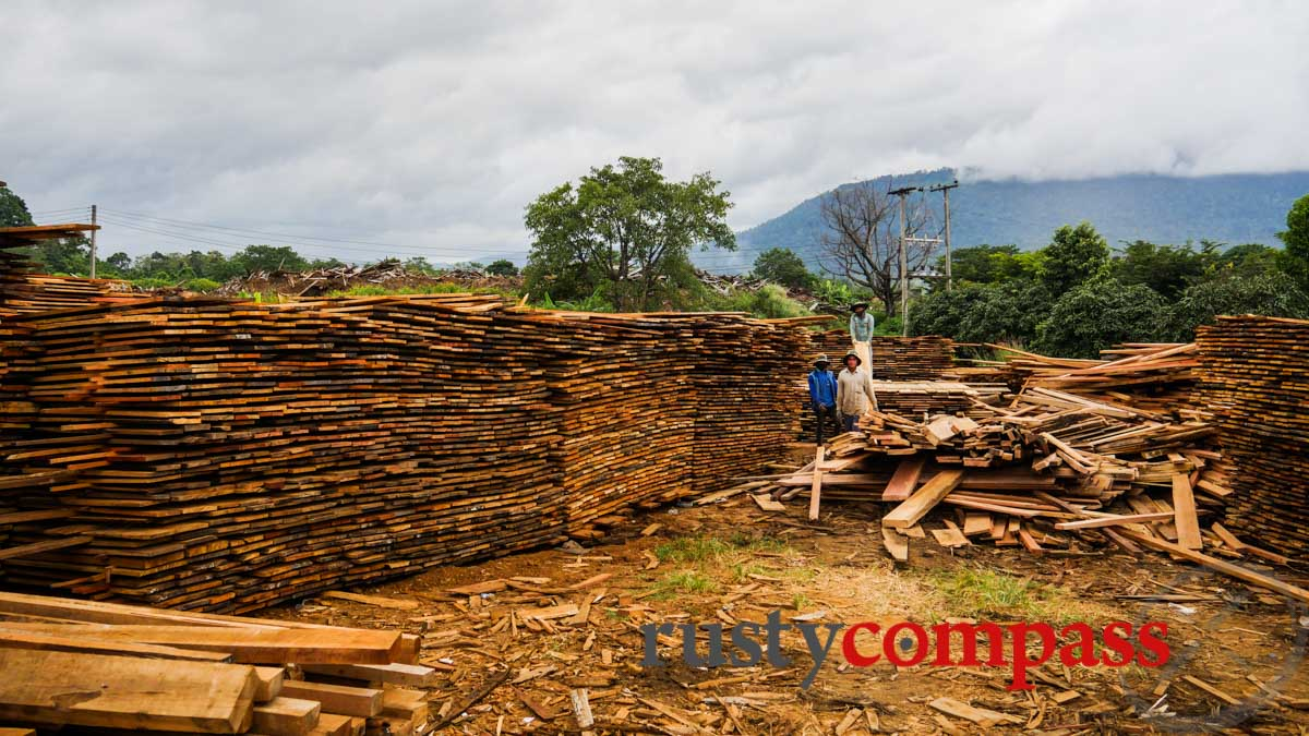 Vietnamese timber yard in the middle of Laos.