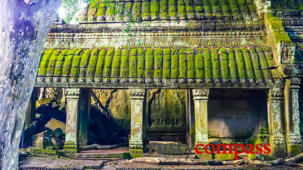 Ta Prohm Temple - Angkor