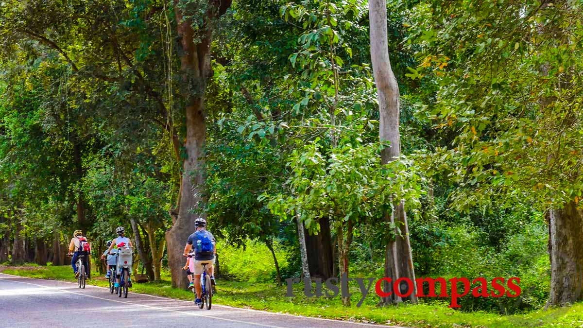 Family cycling Angkor