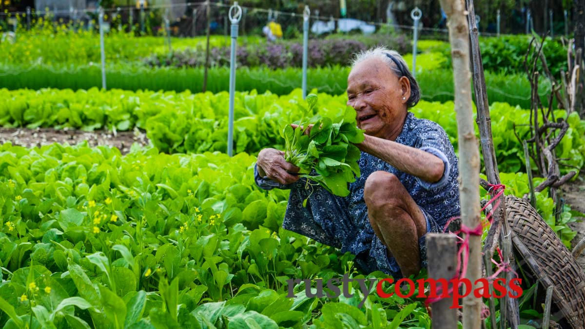Tra Que Vegetable Garden - Cycling Hoi An