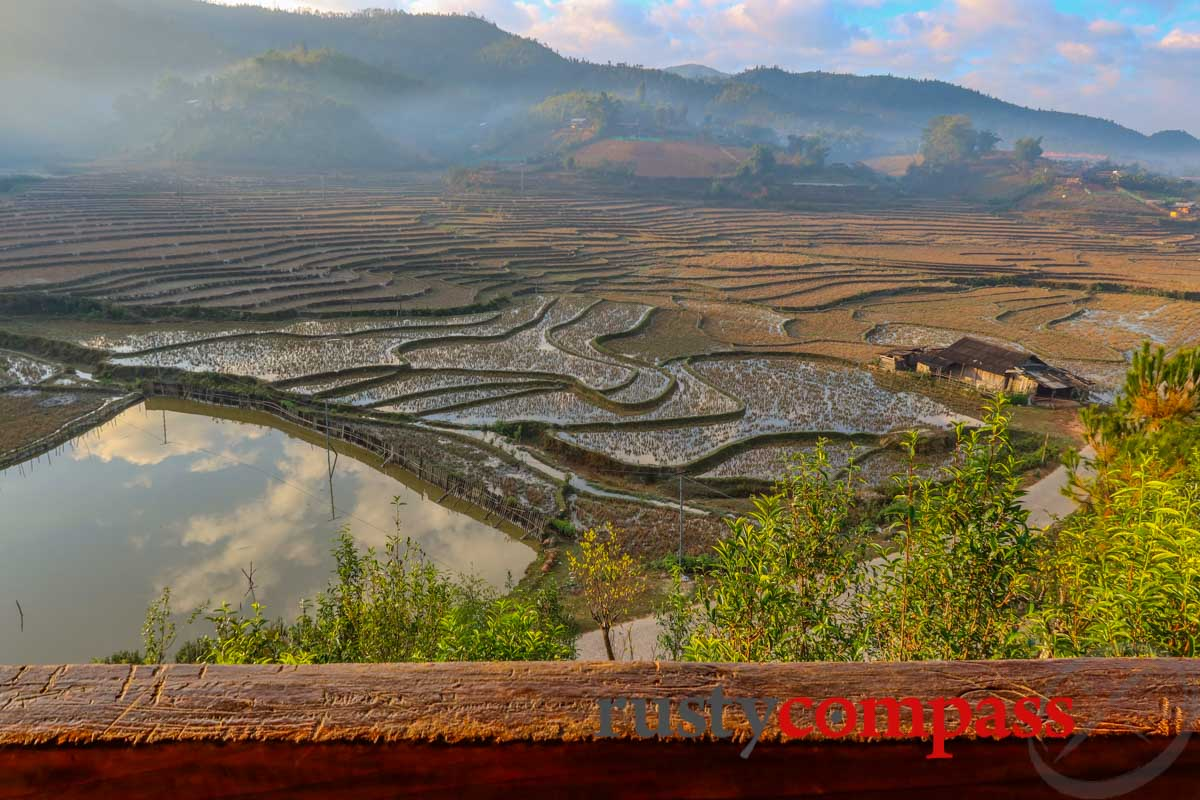 Winter approaches and the colours change - Mu Cang Chai Eco Lodge, Yen Bai