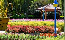 Flower Gardens - Dalat