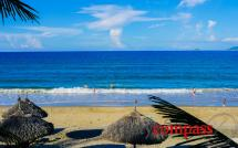 Tan Thanh Garden Homestay, An Bang Beach