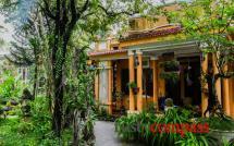 Y Thao Garden
