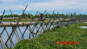 Motorbike tours in Hoi An