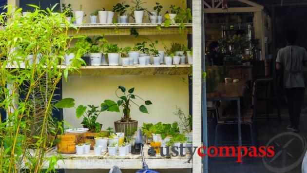 An Cafe, Dalat
