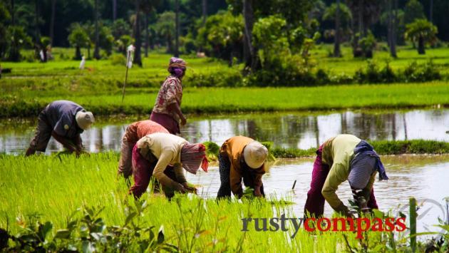 Cambodian countryside, Kampong Chhnang