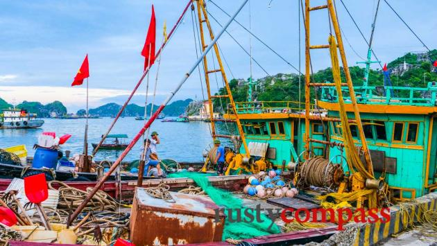 Cat Ba fishing port