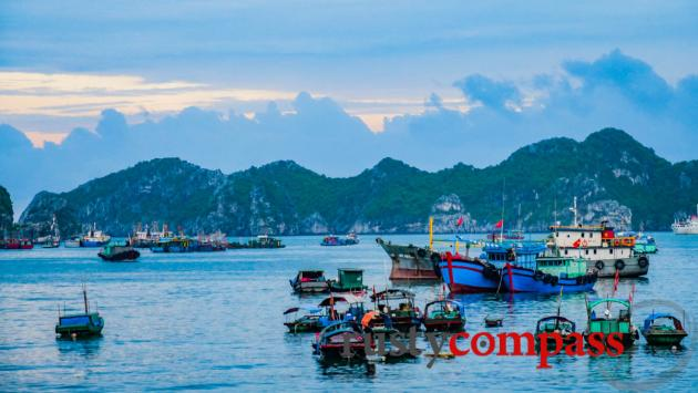 Cat Ba Island's fishing port