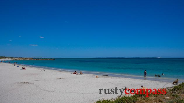 Indian Ocean life - Fremantle Western Australia