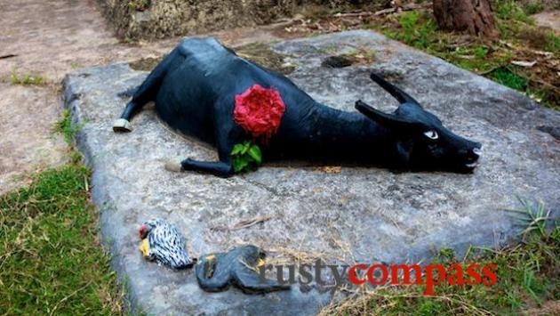 Models of slain animals, My Lai