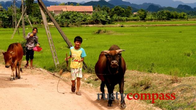 Near Phong Nha