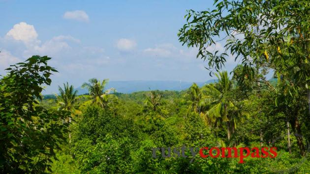 Phu Quoc's forested interior