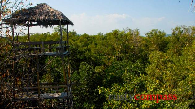 Tree top view - Ream National Park, Sihanoukville, Cambodia