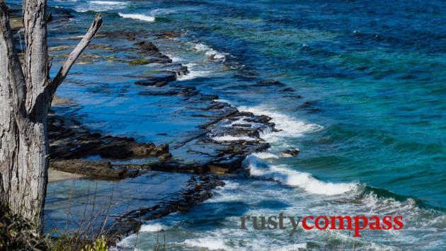 Tessellated Pavement - Tasman Coast, Tasmania