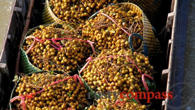 Longan to market