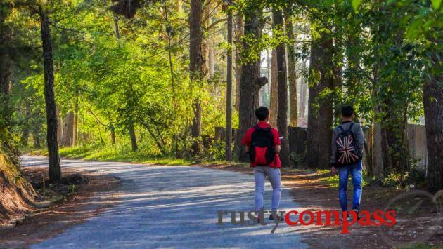 Walking Dalat
