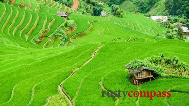 Mu Cang Chai, Yen Bai Province, VIetnam