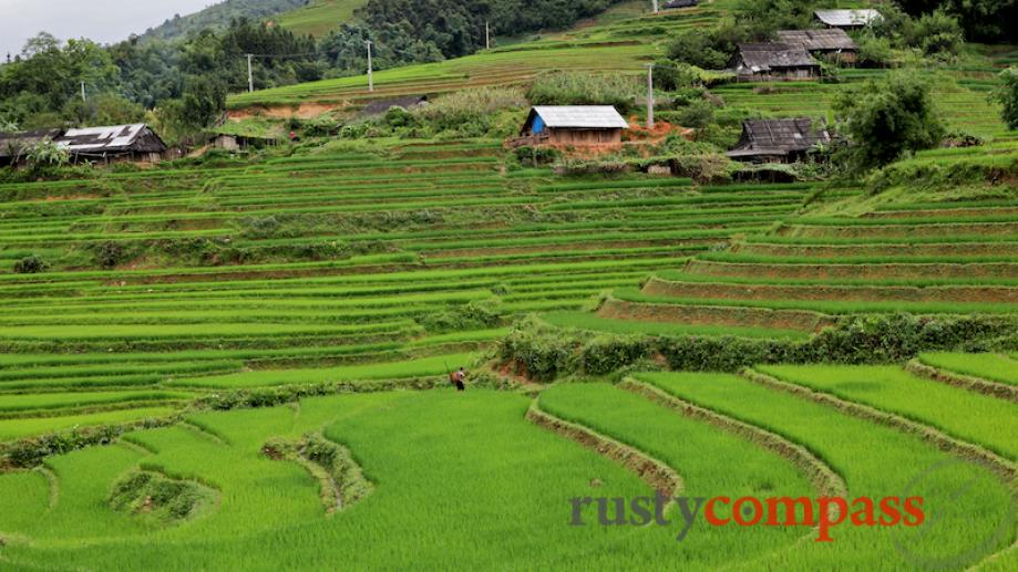 A typical Black Hmong village outside of Sapa