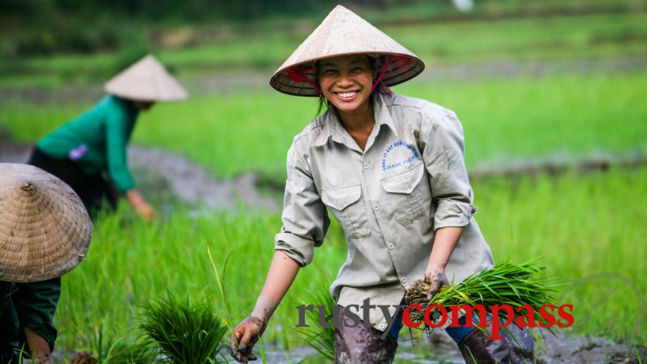 A smile from the rice paddy - outside Sapa.