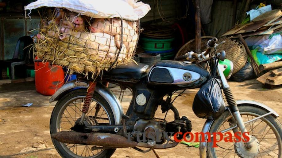 Tough way to travel to Hoi An market.....  The...