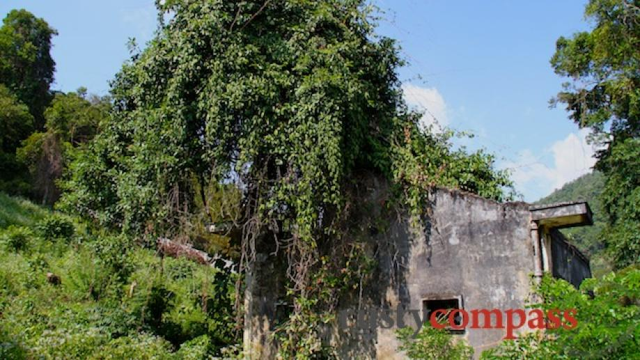 The enmeshment of some of Kep's ruins with trees is...