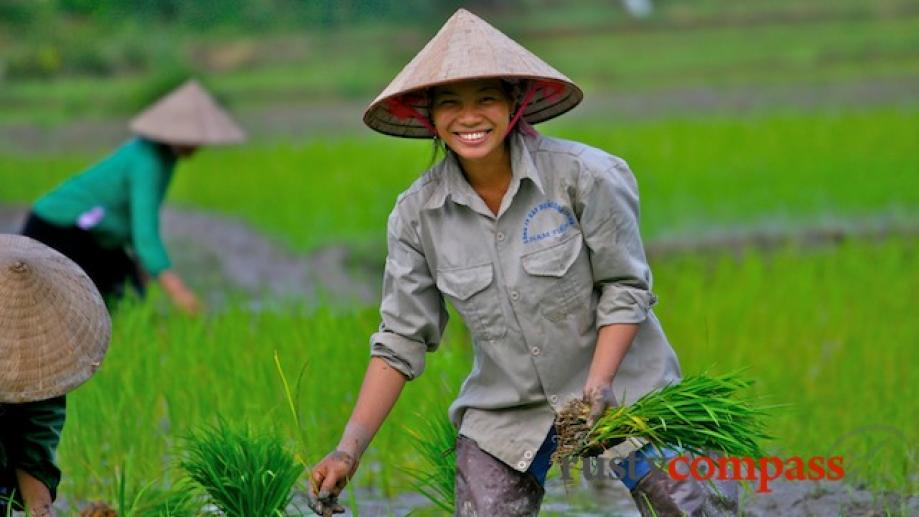 Throughout Vietnam, women seem to be charged with doing much...