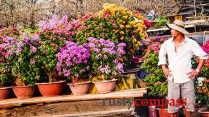 Tet in Saigon - the flower market at Ben Binh Dong